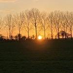 sunset-scaled.jpg